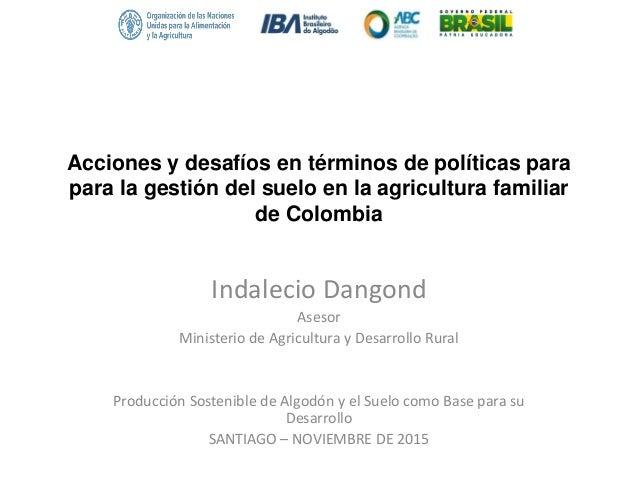 Acciones y desafíos en términos de políticas para para la gestión del suelo en la agricultura familiar de Colombia Indalec...