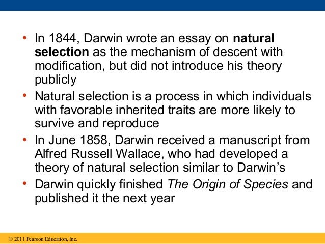essays on darwins theory of evolution