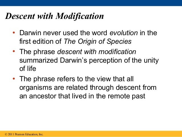Explain Descent With Modification And Natural Selection