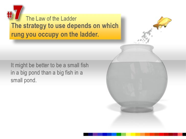 #7<br />The Law of the Ladder<br />The strategy to use depends on which rung you occupy on the ladder.<br />It might be be...
