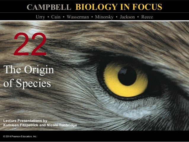 Biology In Focus Chapter 22