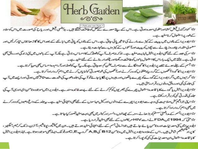 22 medicinal plants 0ld kitchen by allah dad khan for Gardening tools names in urdu