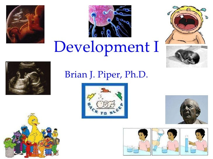 Development I Brian J. Piper, Ph.D.                         1