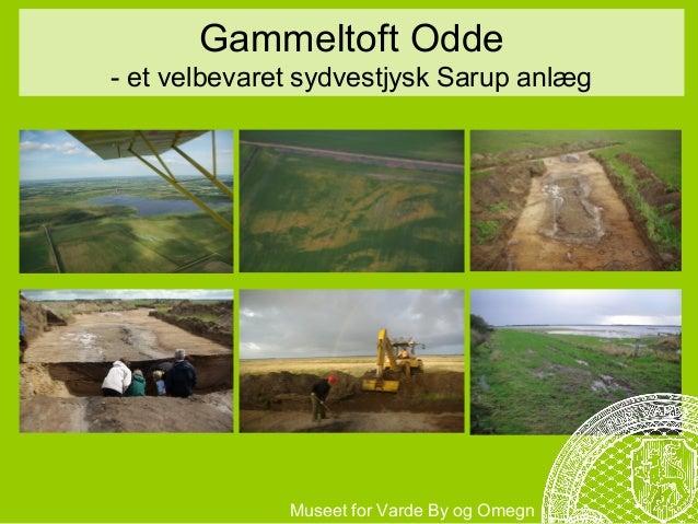 Gammeltoft Odde- et velbevaret sydvestjysk Sarup anlæg              Museet for Varde By og Omegn