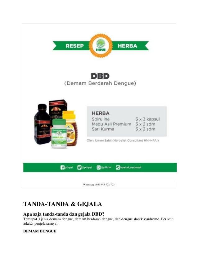 Obat Herbal Dbd Dan Tipes - Tanaman Herbal Pedia