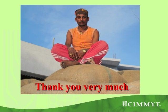 23  25 jan 2013 csisa kathmandu arun joshi