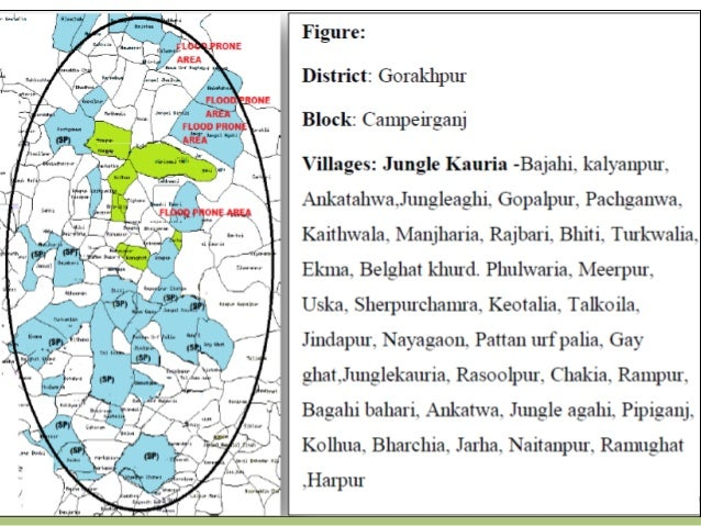 Example 2: Smallholder Aggregators PACS, Noorpur Bet, Ladowal, Punjab