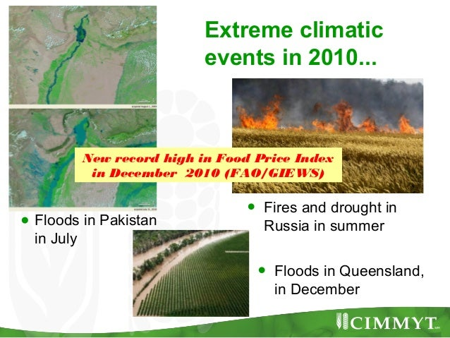 Extreme climatic                         events in 2010...         New record high in Food Price Index          in Decembe...
