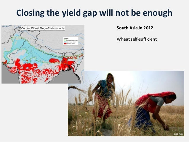 Closing the yield gap will not be enough                         South Asia in 2012                         Wheat self-suf...