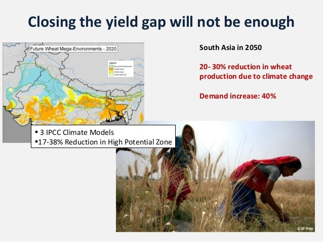 Closing the yield gap will not be enough                                           South Asia in 2050                     ...