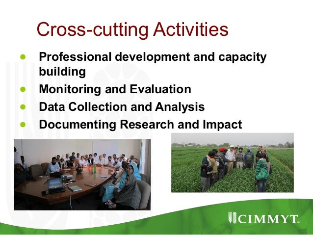Cross-cutting Activities●   Professional development and capacity    building●   Monitoring and Evaluation●   Data Collect...