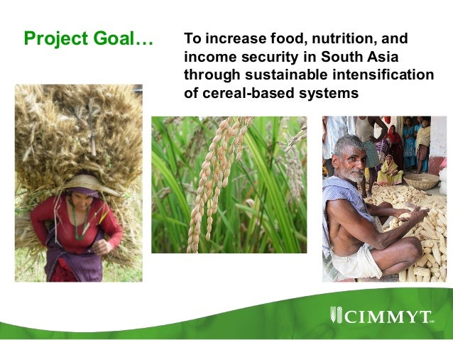 Project Goal…   To increase food, nutrition, and                income security in South Asia                through susta...