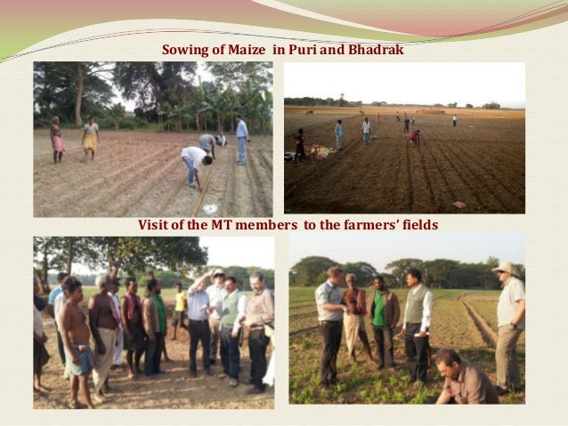 Fertilizer requirements for nutrient management in Rice (Hybrid)                                 cultivation (Yield target...