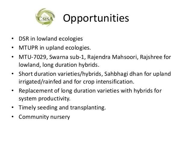 Opportunities• DSR in lowland ecologies• MTUPR in upland ecologies.• MTU-7029, Swarna sub-1, Rajendra Mahsoori, Rajshree f...