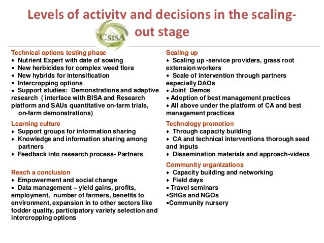 Levels of activity and decisions in the scaling-                         out stageTechnical options testing phase         ...