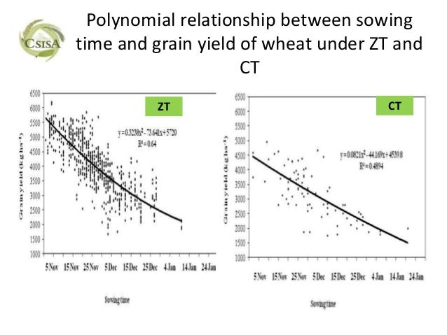 Polynomial relationship between sowingtime and grain yield of wheat under ZT and                     CT         ZT        ...