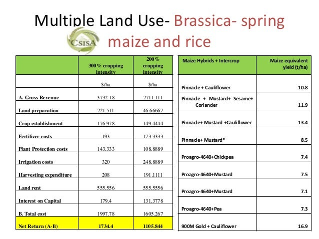 Multiple Land Use- Brassica- spring                 maize and rice                                           200%      Mai...