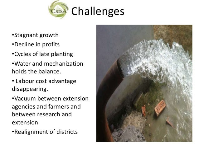 Challenges•Stagnant growth•Decline in profits•Cycles of late planting•Water and mechanizationholds the balance.• Labour co...