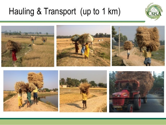 Hauling & Transport (up to 1 km)