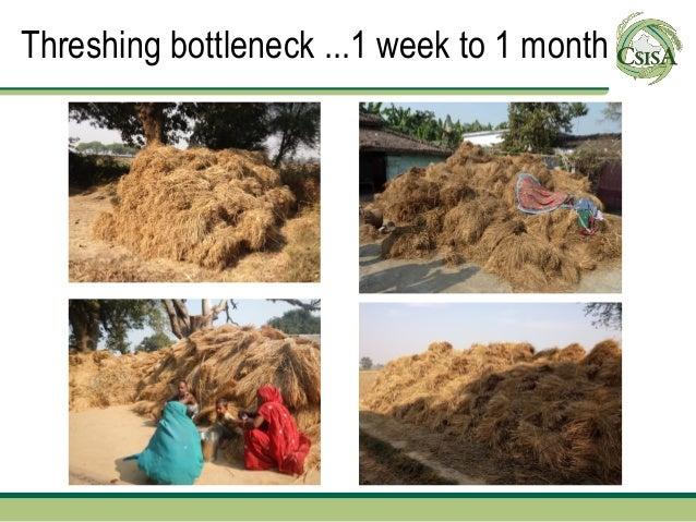 Threshing bottleneck ...1 week to 1 month