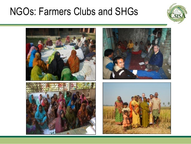 NGOs: Farmers Clubs and SHGs