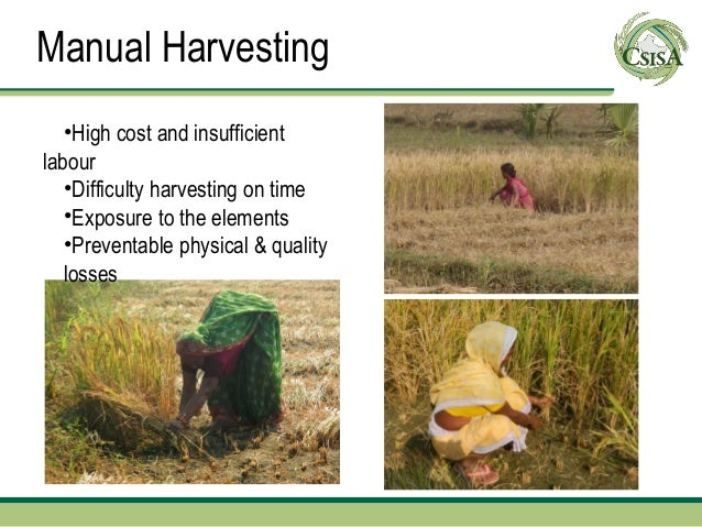 Manual Harvesting   •High cost and insufficientlabour   •Difficulty harvesting on time   •Exposure to the elements   •Prev...
