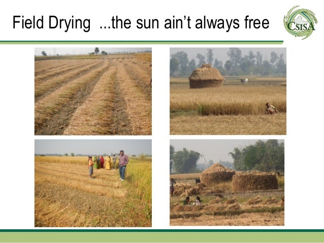 Field Drying ...the sun ain't always free