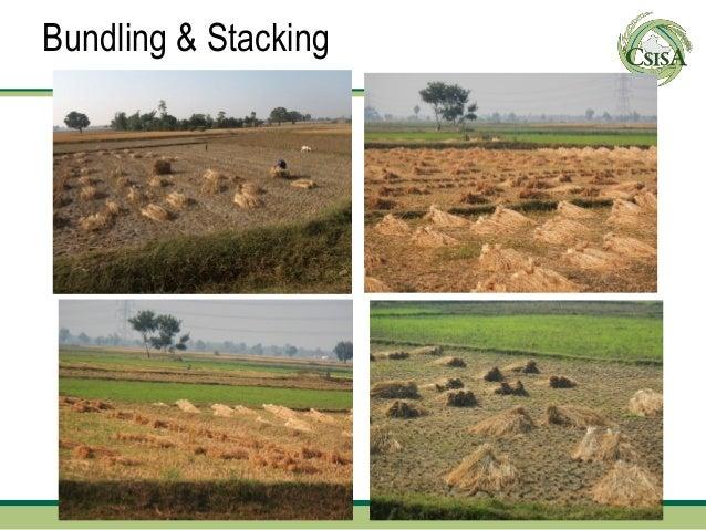 Bundling & Stacking