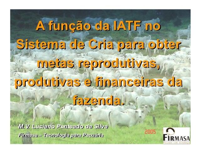 A função da IATF noSistema de Cria para obter   metas reprodutivas,produtivas e financeiras da         fazenda.M.V. Lucian...