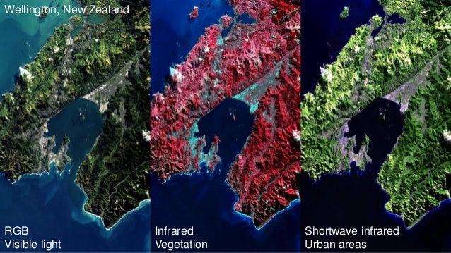 RGB Visible light Infrared Vegetation Shortwave infrared Urban areas Wellington, New Zealand