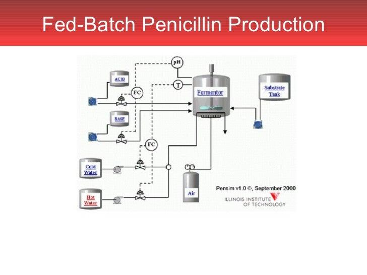 production of penicillin through fermentation essay