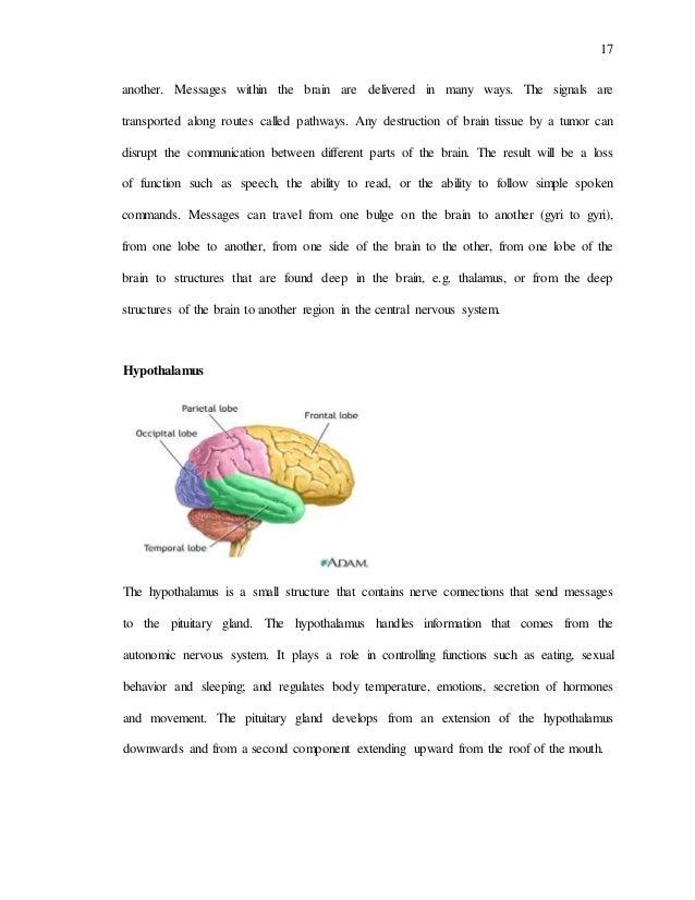 Miller s Autonomic Nervous System Dysregulation Model of the Effect of  Emotions on Asthma   Wood Pinterest