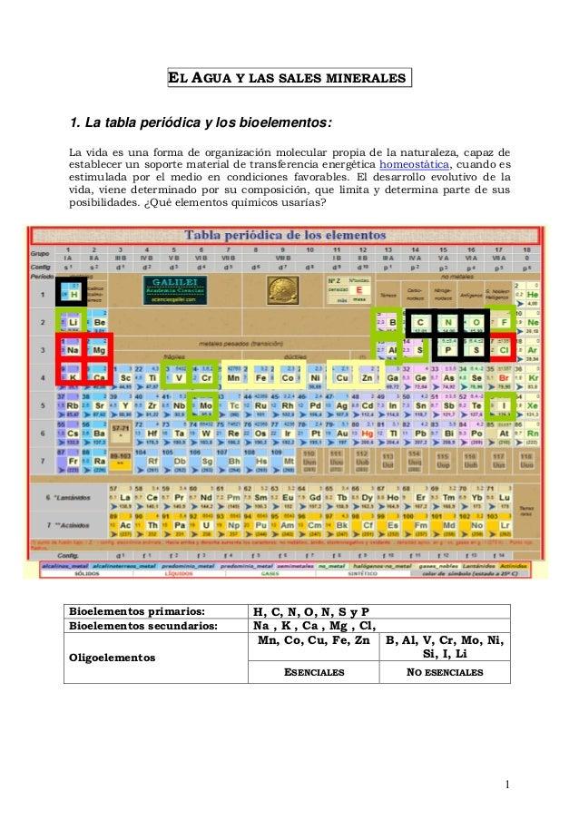 agua y sales la tabla peridica y los bioelementos flavorsomefo - Tabla Periodica De Los Elementos Quimicos Galilei