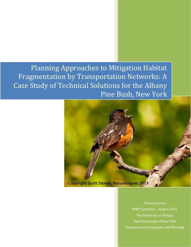 IntellectExchange, Inc. Case Study Analysis & Solution