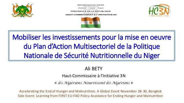 Mobiliser les investissements pour la mise en oeuvre du Plan d'Action Multisectoriel de la Politique Nationale de Sécurité...