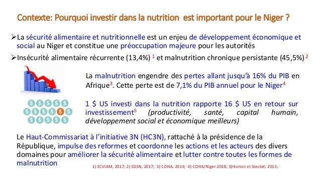 Mobiliser les investissements pour la mise en oeuvre du Plan d'Action Multisectoriel de la Politique Nationale de Sécurité Nutritionnelle du Niger  Slide 2