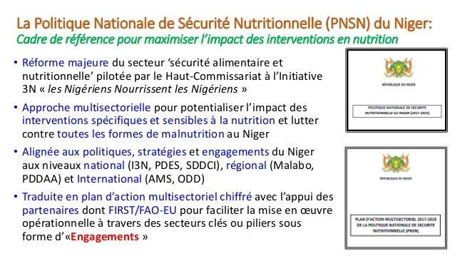 Mobiliser les investissements pour la mise en oeuvre du Plan d'Action Multisectoriel de la Politique Nationale de Sécurité Nutritionnelle du Niger  Slide 3