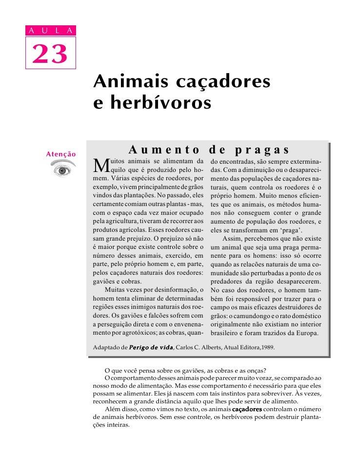 A UA U L A      L A      23 23              Animais caçadores              e herbívoros     Atenção                Aumento...