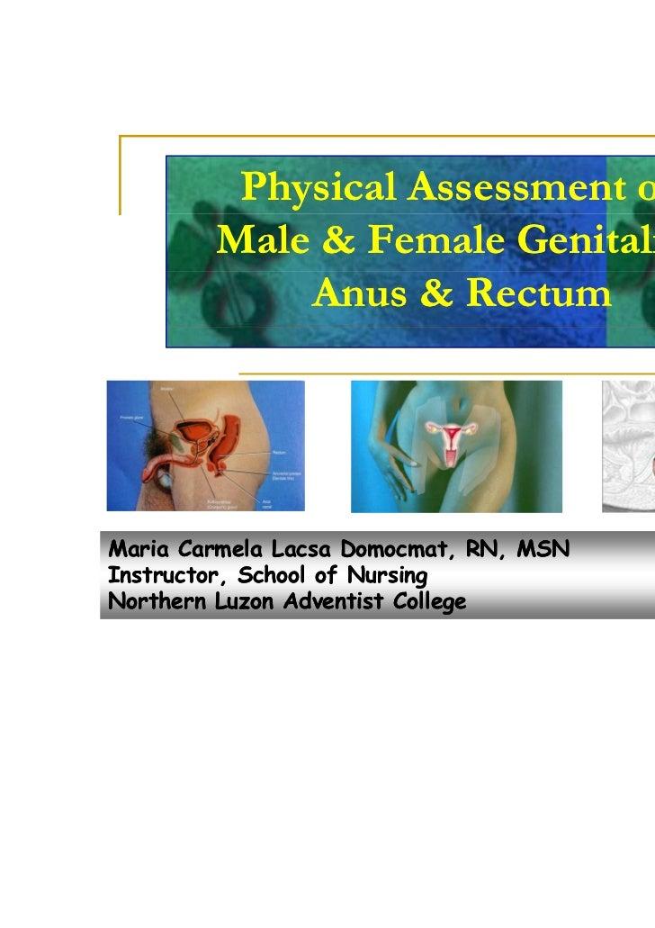Physical Assessment of        Male & Female Genitalia,            Anus & RectumMaria Carmela Lacsa Domocmat, RN, MSNInstru...