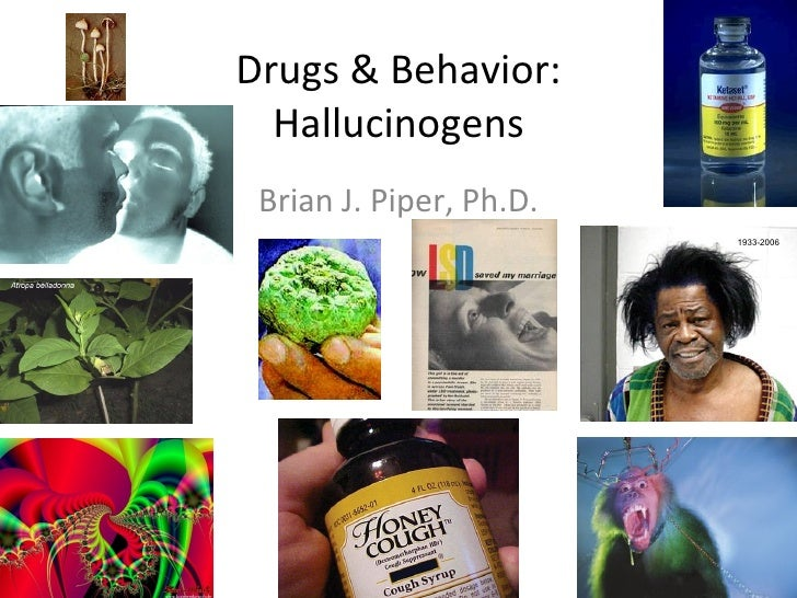 Drugs & Behavior:  Hallucinogens Brian J. Piper, Ph.D.                         1933-2006