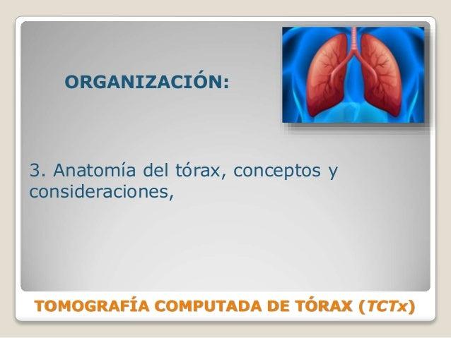 TOMOGRAFÍA COMPUTADA DE TÓRAX (TCTx) ORGANIZACIÓN: 3. Anatomía del tórax, conceptos y consideraciones,
