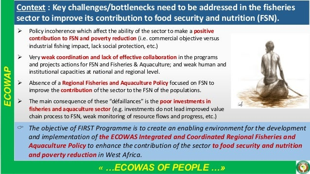 « …ECOWAS OF PEOPLE …» ECOWAP ➢ Policy incoherence which affect the ability of the sector to make a positive contribution ...