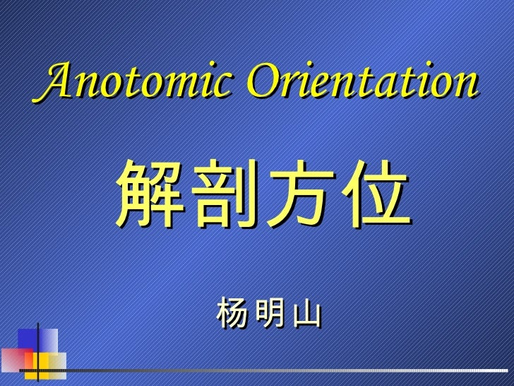 Anotomic Orientation 解剖方位 杨明山