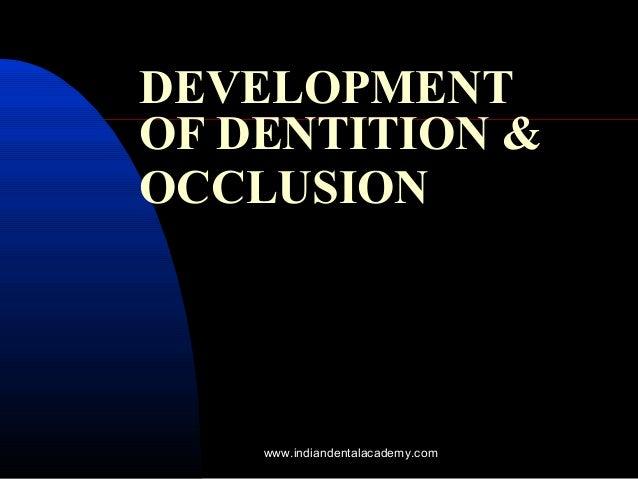 DEVELOPMENT OF DENTITION & OCCLUSION www.indiandentalacademy.com