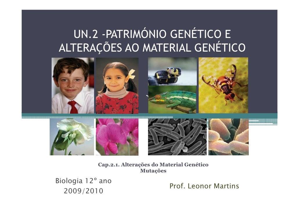 UN.2 -PATRIMÓNIO GENÉTICO E ALTERAÇÕES AO MATERIAL GENÉTICO                 Cap.2.1. Alterações do Material Genético      ...