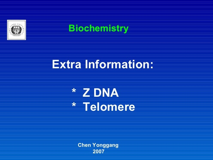Extra Information: *  Z DNA *  Telomere Chen Yonggang 2007 Biochemistry
