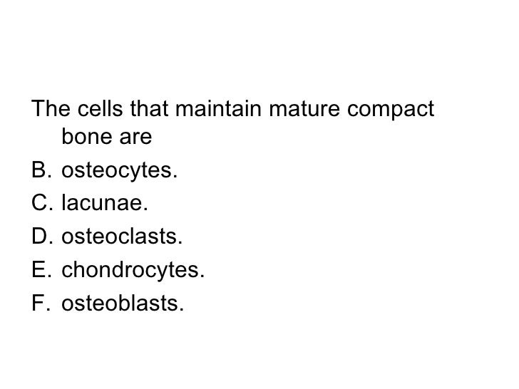 Mature compact bone are called