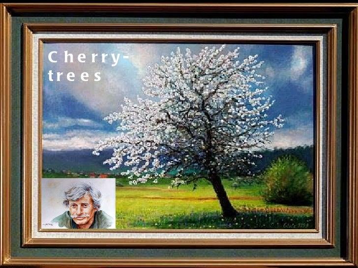 Cherry- trees