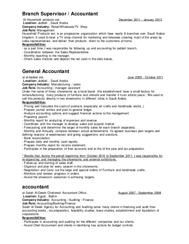 mohamed shosha accountant resume 2