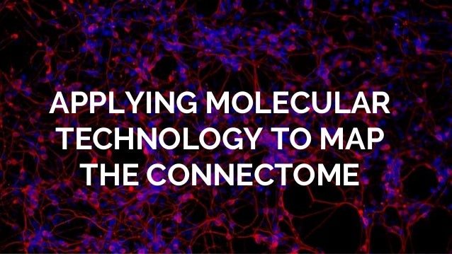 APPLYING MOLECULAR TECHNOLOGY TO MAP THE CONNECTOME
